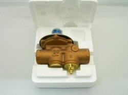 画像1: 減圧弁 温水器用 20